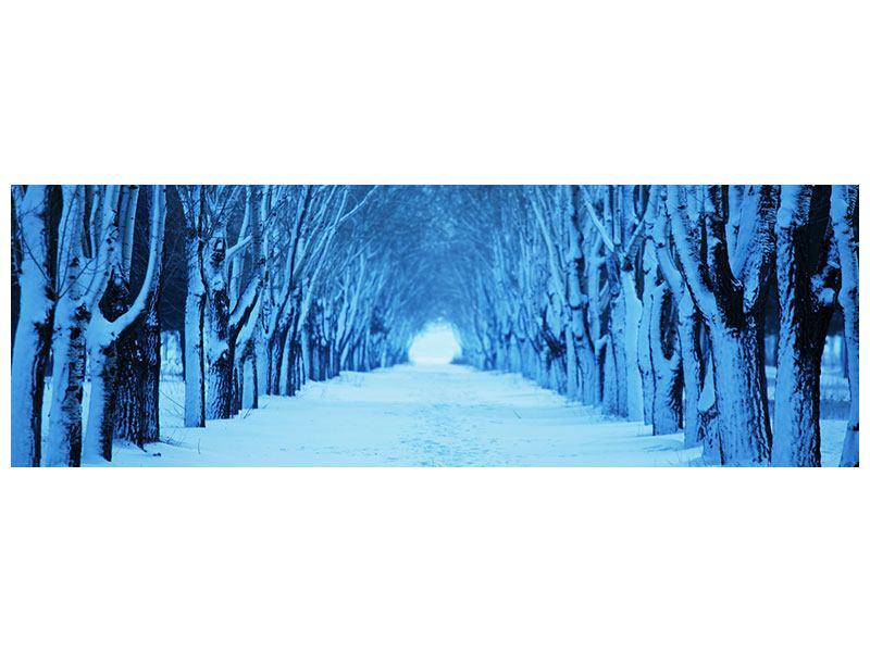 Leinwandbild Panorama Winterbäume