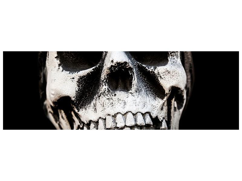 Leinwandbild Panorama Skull