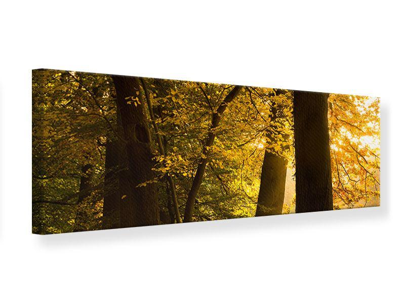 Leinwandbild Panorama Herbstlaub