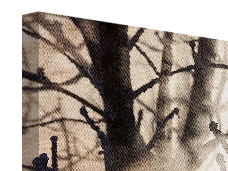 Leinwandbild Panorama Äste im Schleierlicht