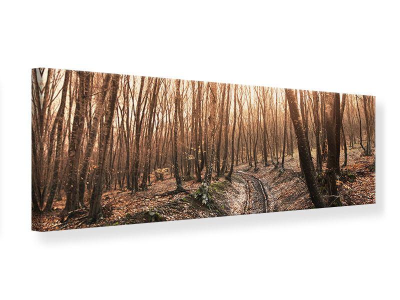 Leinwandbild Panorama Der kahle Wald