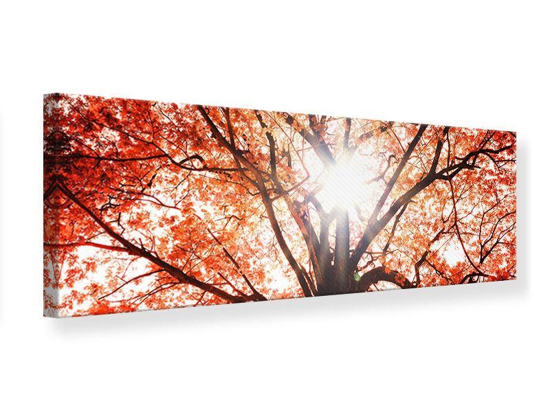 Leinwandbild Panorama Herbstlicht