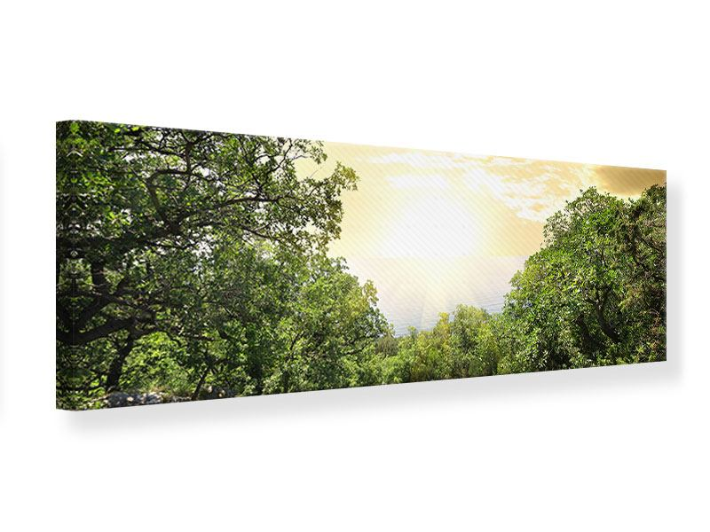 Leinwandbild Panorama Am Ende des Waldes