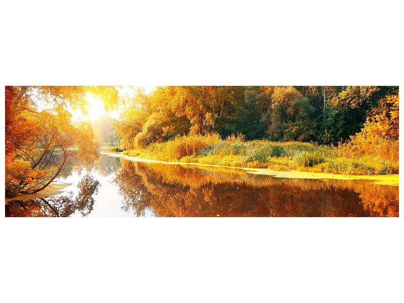 Leinwandbild Panorama Waldspiegelung im Wasser