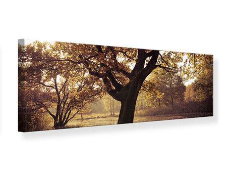 Leinwandbild Panorama Landschaftspark