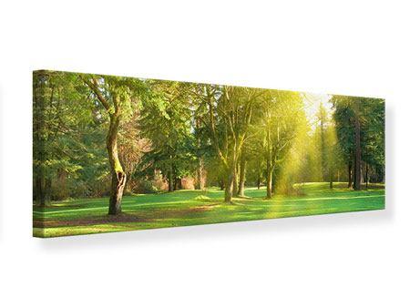 Leinwandbild Panorama Im Park