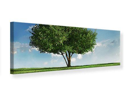 Leinwandbild Panorama Baum im Grün
