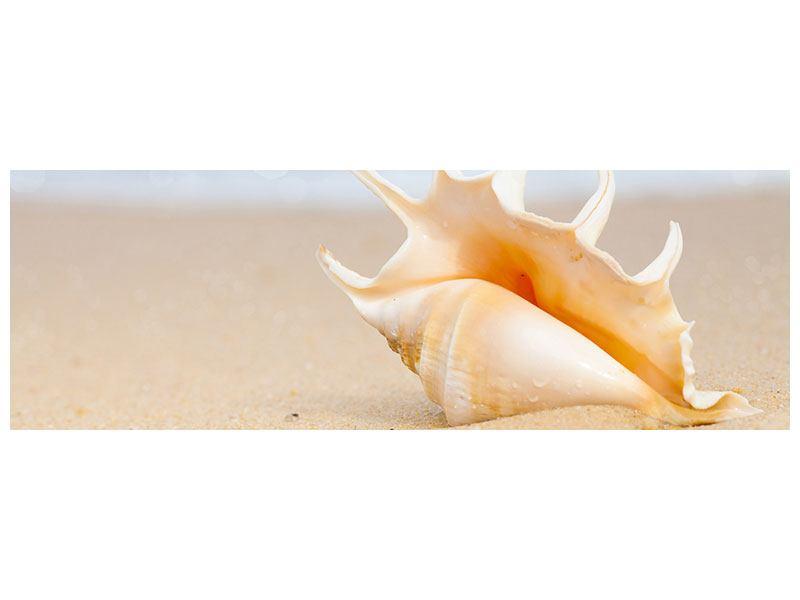Leinwandbild Panorama Die Muschel am Strand