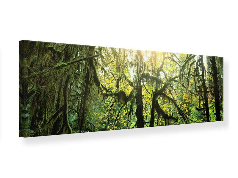 Leinwandbild Panorama Verträumter Wald