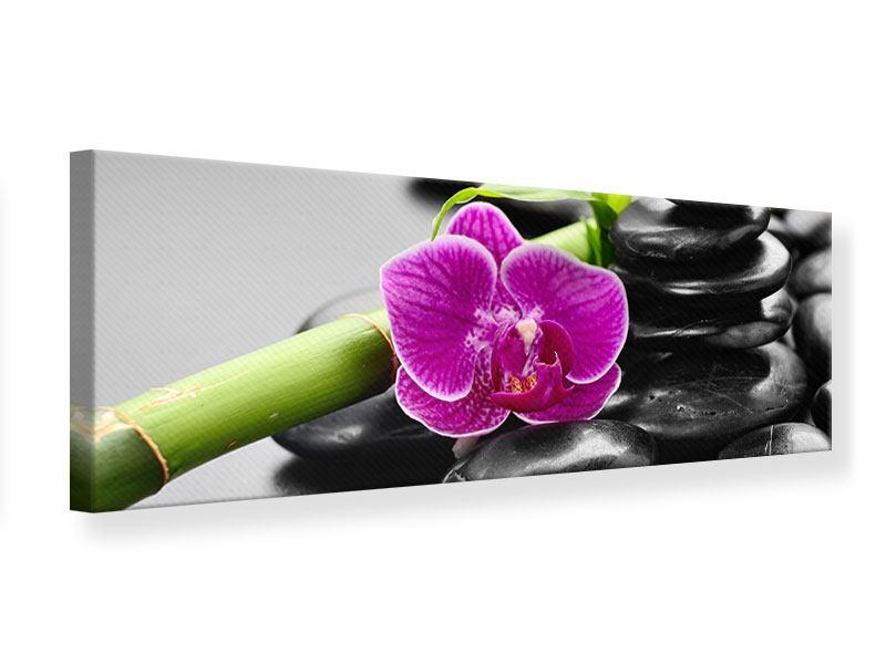 Leinwandbild Panorama Feng-Shui-Orchidee