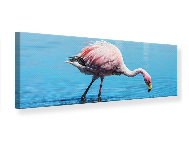 Leinwandbild Panorama Der Flamingo