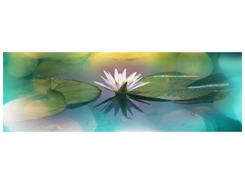 Leinwandbild Panorama Lotus-Spiegelung