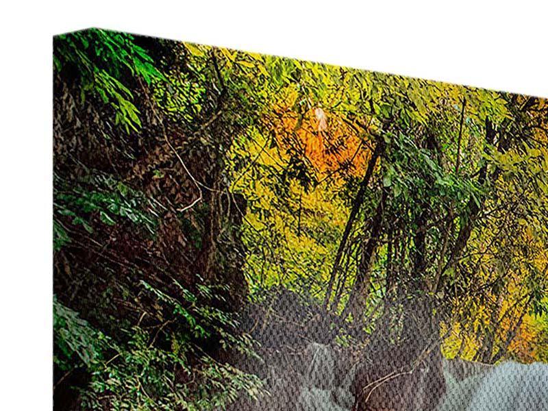 Leinwandbild Panorama Fallendes Gewässer