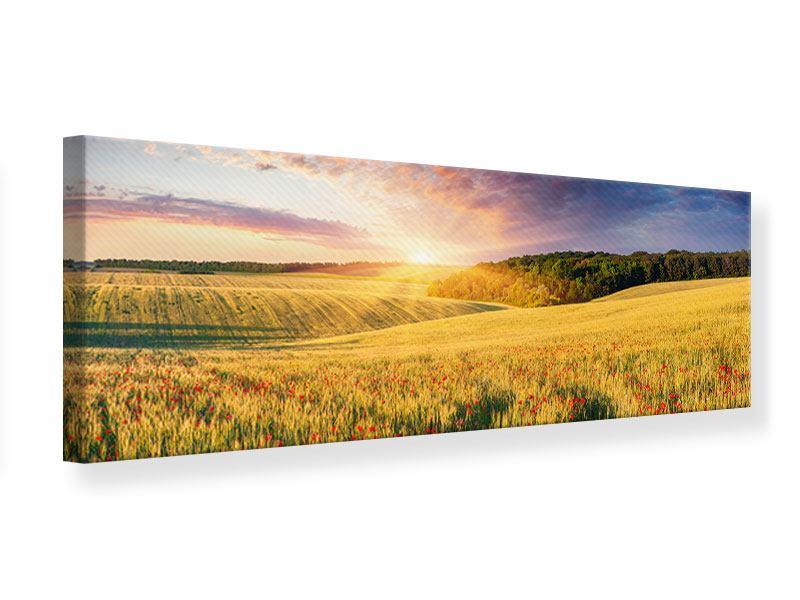 Leinwandbild Panorama Ein Blumenfeld bei Sonnenaufgang