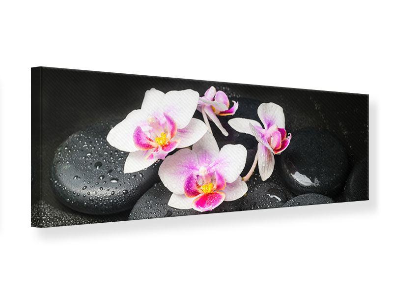 Leinwandbild Panorama Feng-Shui-Orchidee Zen
