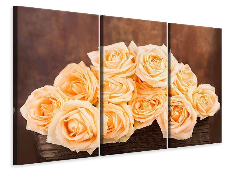 Leinwandbild 3-teilig Die Rosenzeit