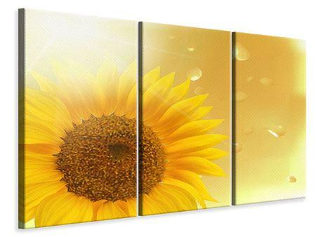 Leinwandbild 3-teilig Sonnenblume im Morgentau