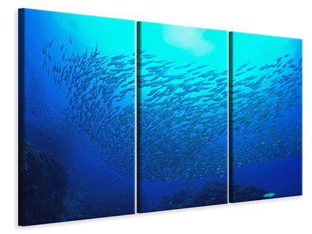 Leinwandbild 3-teilig Fischwelt
