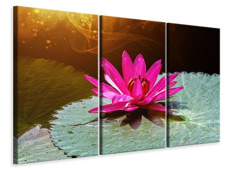 Leinwandbild 3-teilig Der Frosch und das Seerosenblatt