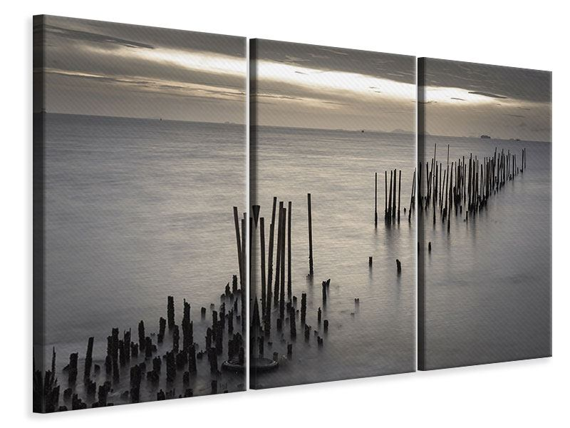 3 Piece Canvas Print The Sea And The Tear