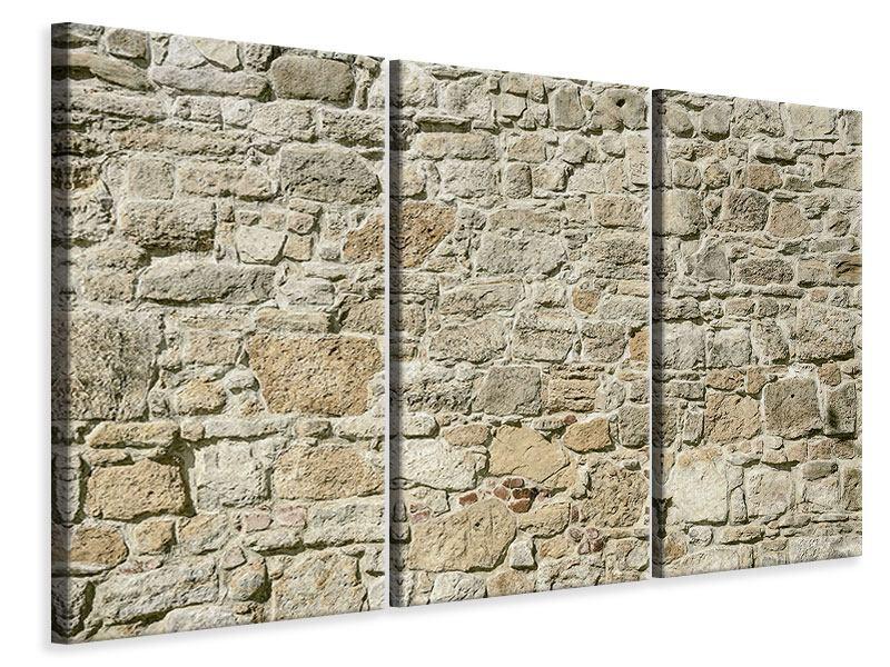Leinwandbild 3-teilig Naturmauer