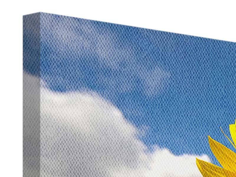 Leinwandbild 3-teilig Das Feld der Sonnenblumen