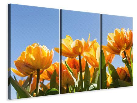 Leinwandbild 3-teilig Märchenhafte Tulpen