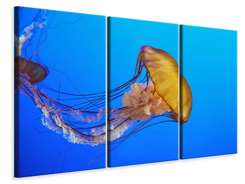 Leinwandbild 3-teilig Medusa