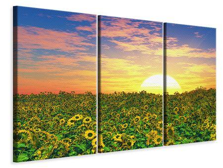 Leinwandbild 3-teilig Blumenpanorama bei Sonnenuntergang