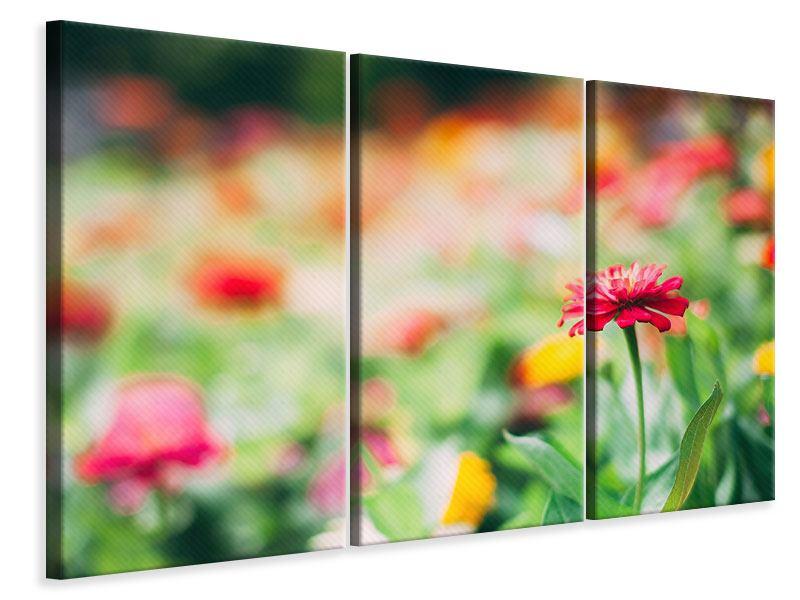 Leinwandbild 3-teilig Im Blumengarten