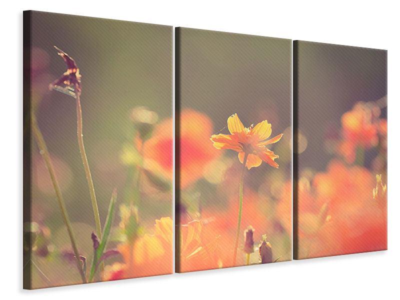 Leinwandbild 3-teilig Blütenpracht