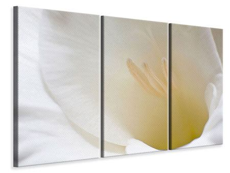 Leinwandbild 3-teilig In einer Blüte