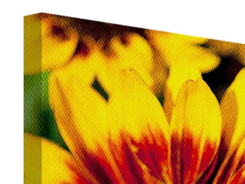 Leinwandbild 3-teilig Reife Sonnenblumen