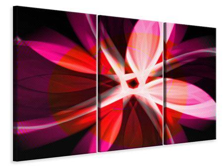 Leinwandbild 3-teilig Abstrakt Flower Power
