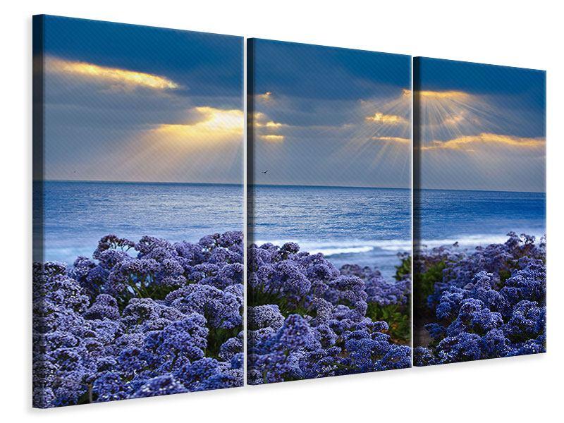 Leinwandbild 3-teilig Der Lavendel und das Meer