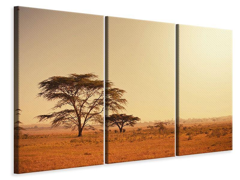 Leinwandbild 3-teilig Weideland in Kenia