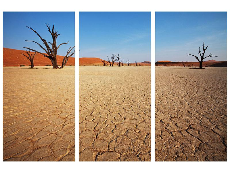 Leinwandbild 3-teilig Wüste