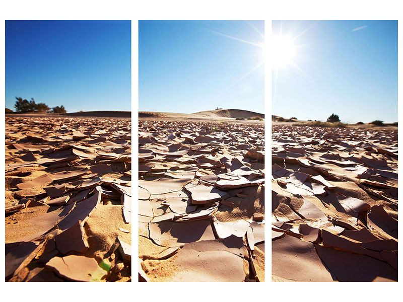 Leinwandbild 3-teilig Dürre