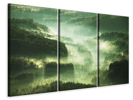 Leinwandbild 3-teilig Über den Wäldern