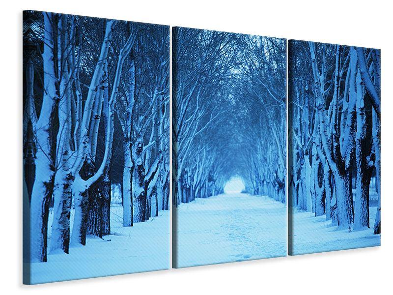 Leinwandbild 3-teilig Winterbäume
