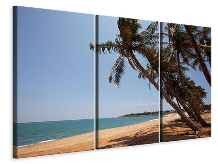 Leinwandbild 3-teilig Palmblätter