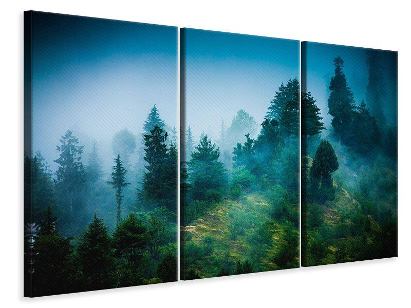Leinwandbild 3-teilig Geheimnisvoller Wald