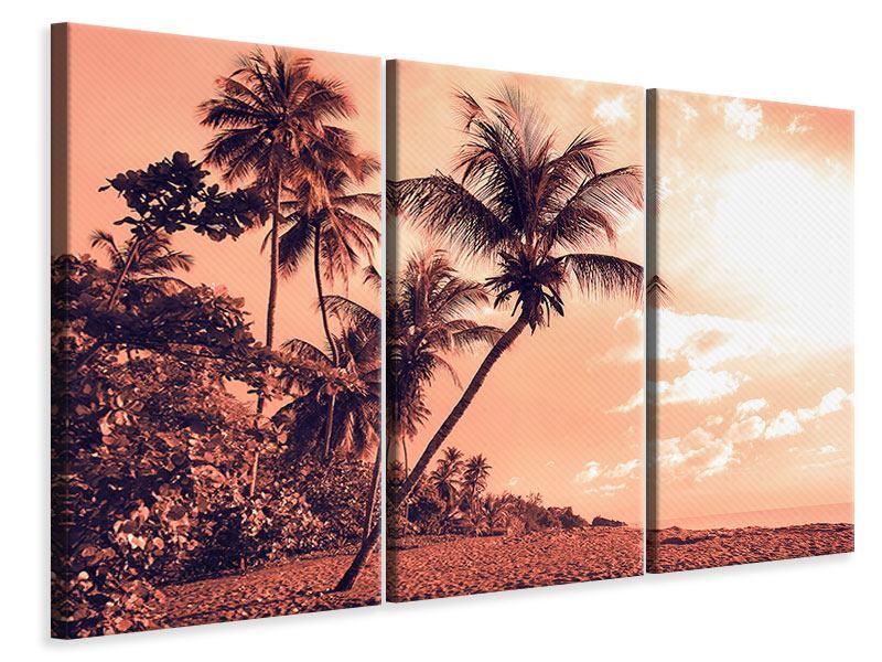 Leinwandbild 3-teilig Tropenparadies