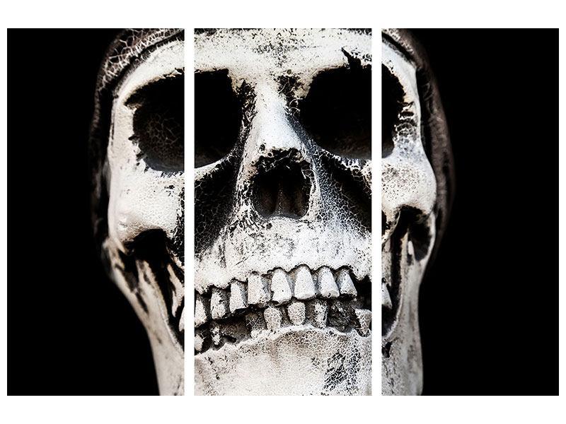 Leinwandbild 3-teilig Skull