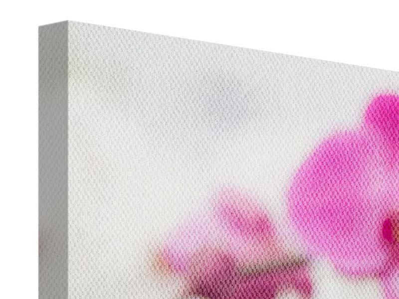 Leinwandbild 3-teilig Das Symbol der Orchidee