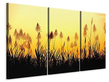 Leinwandbild 3-teilig Die Blumen des Feldes