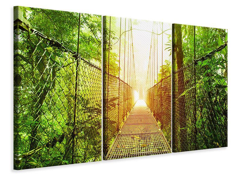 Leinwandbild 3-teilig Hängebrücke