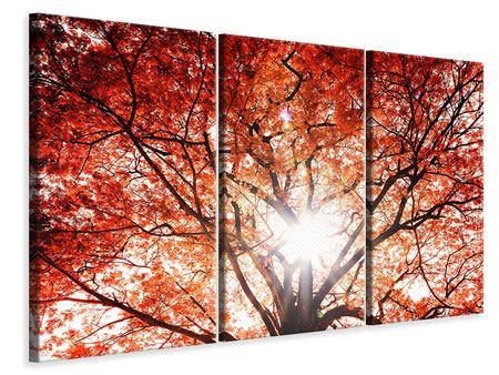 Leinwandbild 3-teilig Herbstlicht