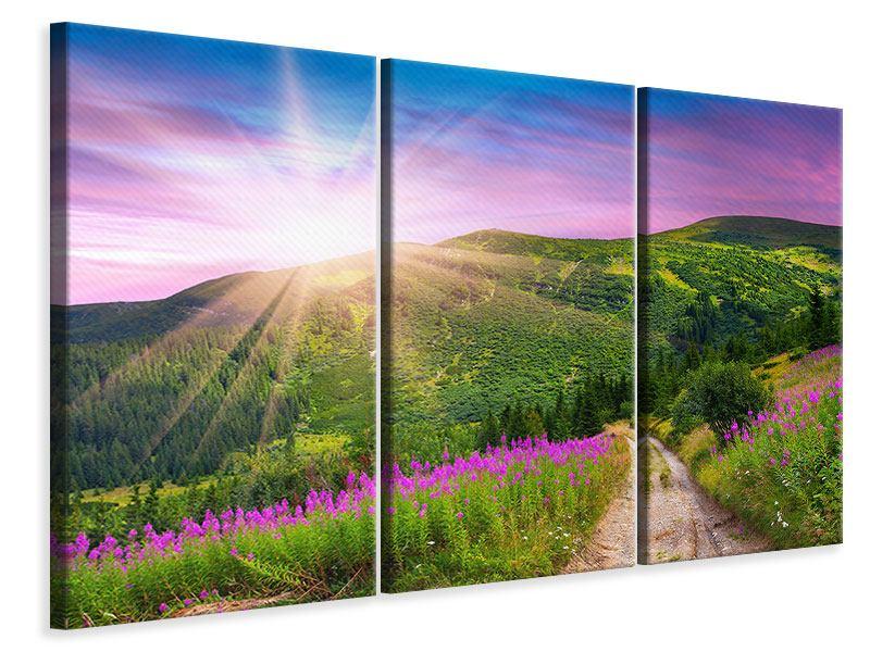 Leinwandbild 3-teilig Eine Sommerlandschaft bei Sonnenaufgang