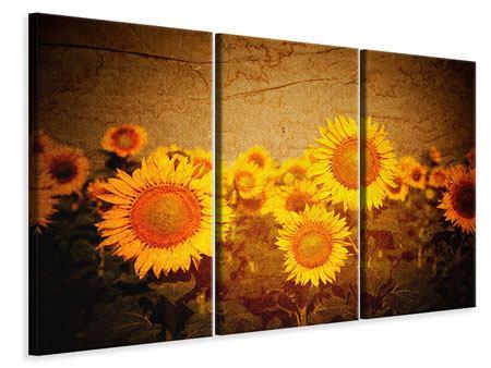 Leinwandbild 3-teilig Retro-Sonnenblumen